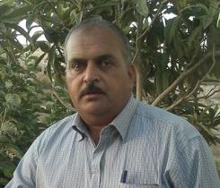 جمال عبدالدايم