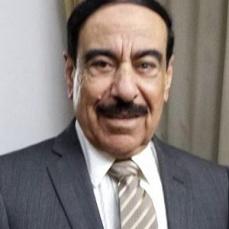 محمد حسن خضر