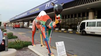 في مطار البحرين