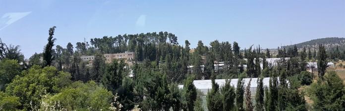 كلية فلسطين التقنية - العروب