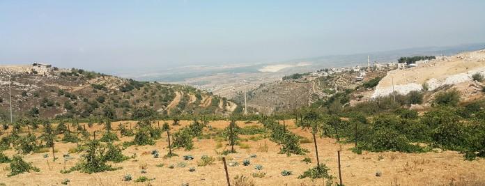 منظر جبلي - بيت امر